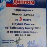 Кубок России 2016 по Тайскому Боксу, г. Ижевск